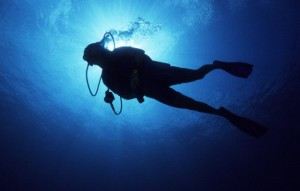 Low Angle View of a Scuba Diver Swimming Underwater